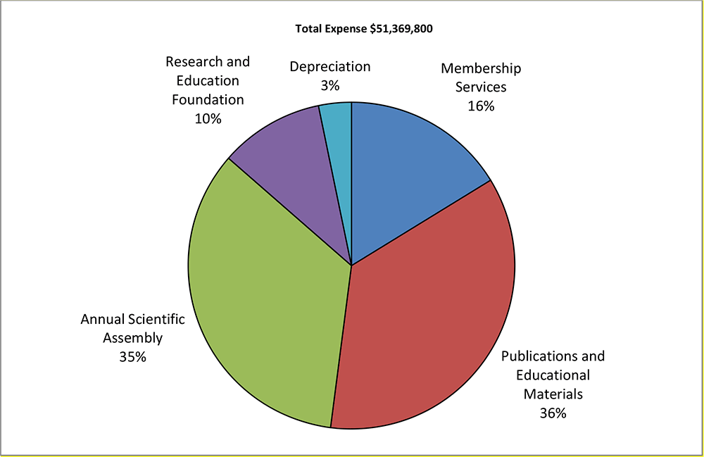 2019 Total Expense Graph