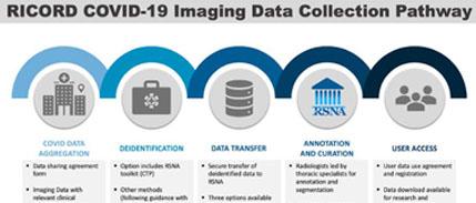 RICORD COVID-19 Image Data Pathway
