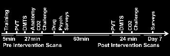 Schematic shows the timeline of functional MR imaging and surveys