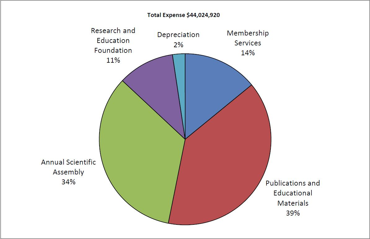 2013 Total Expenses pie chart