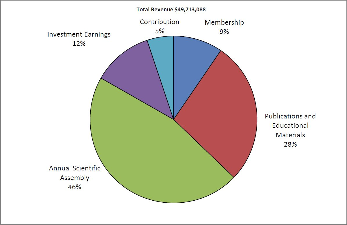 2013 Total Revenue pie chart