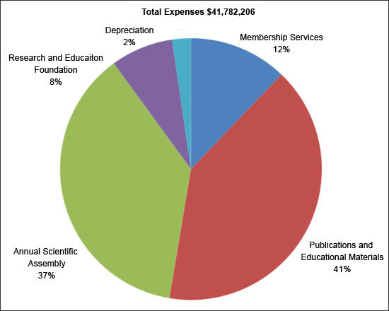 Total_Expenses_pie_chart_2009_1.jpg