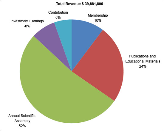 Total_Revenue_pie_chart_2009_1.jpg