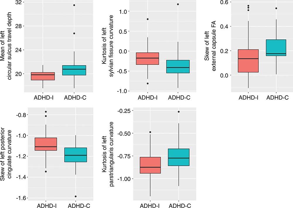 Mri Shows Brain Differences Among Adhd >> Mri Shows Brain Differences Among Adhd Patients
